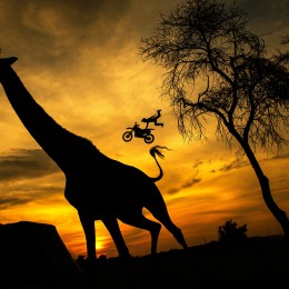 God bless Africa, God bless the Red Bull X Fighters