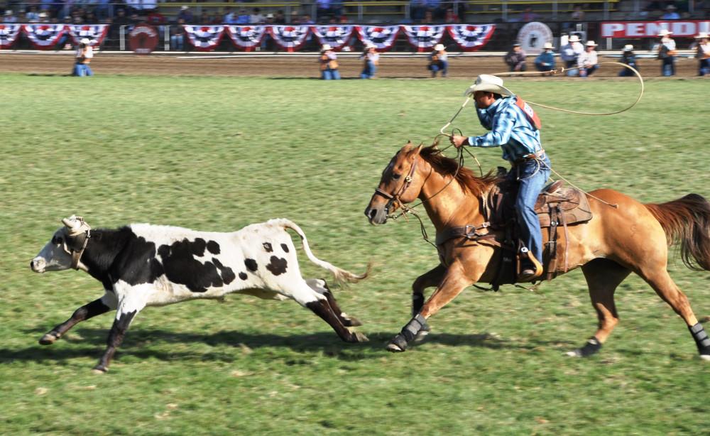 34_Cowboy  DSC_4302