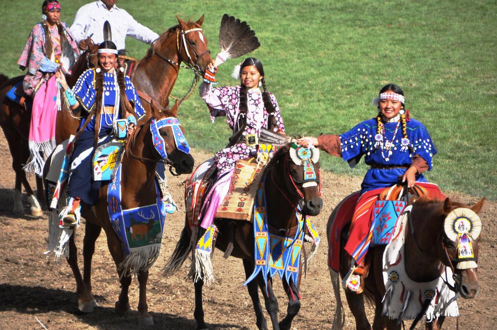 36_Parade Pferd DSC_4254
