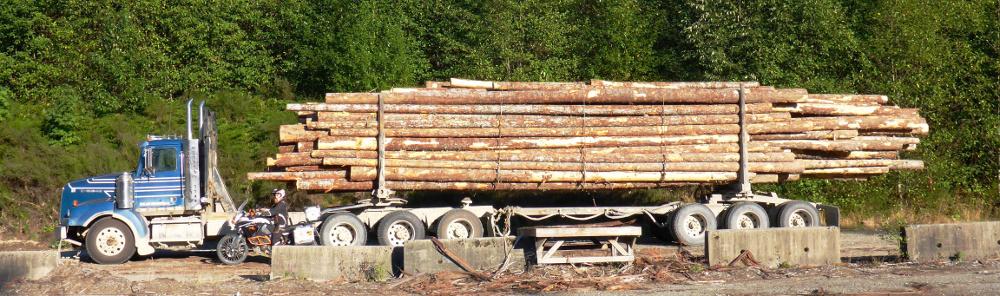 9 Truck P1030560