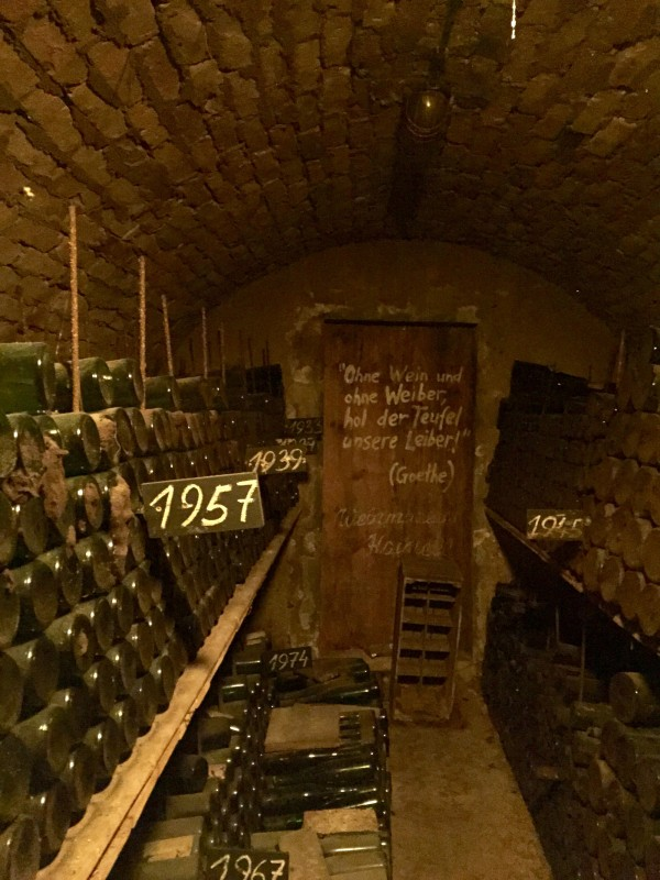 Loisium wine cellar