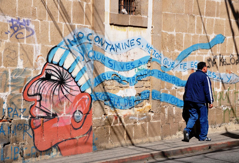 Ein Graffito ruft zu Umweltbewusstsein auf | Graffito calling for environmental awareness