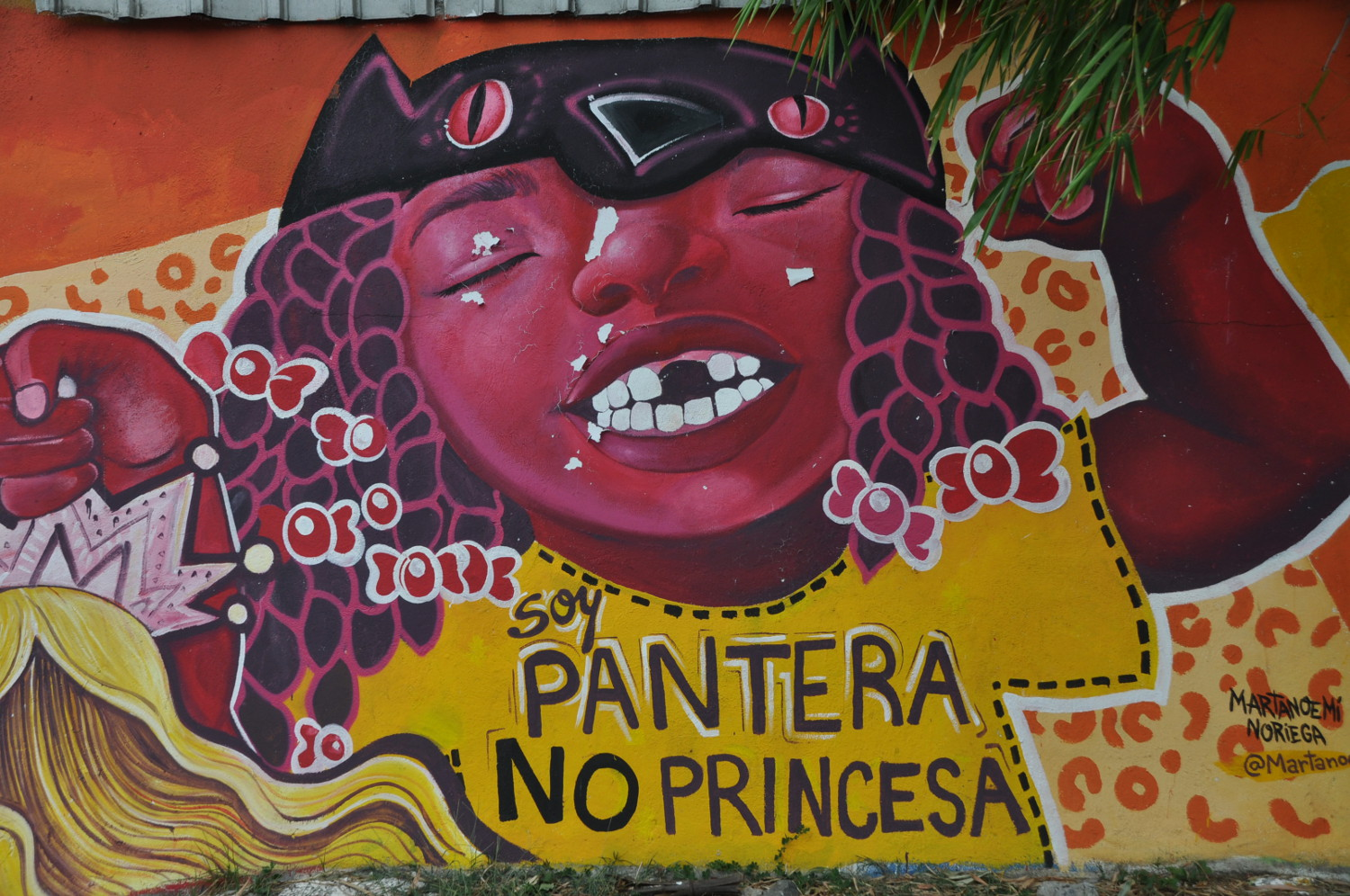 Graffito: Panther, nicht Prinzessin! | Graffito: a panther, not a princess!