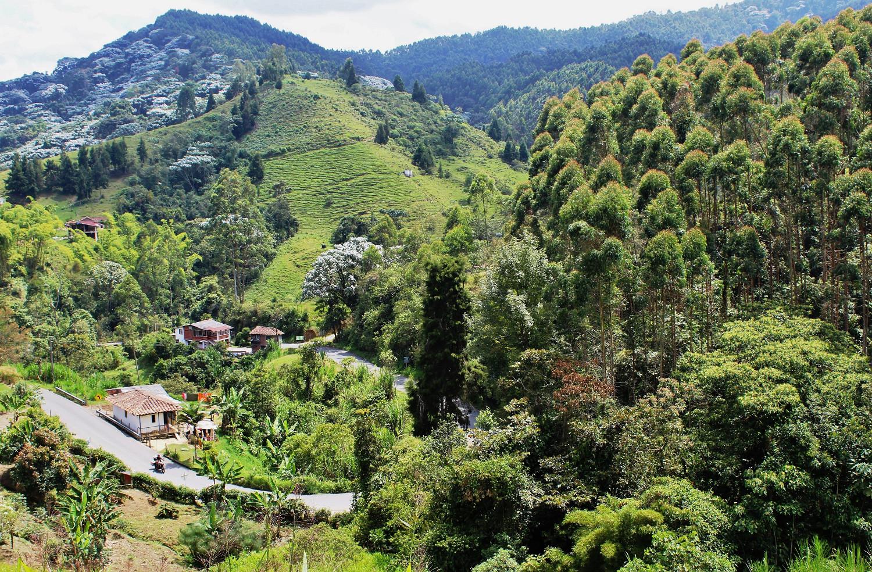 Unterwegs in Kolumbiens Kaffeeregion | On the road in Colombia's coffee region