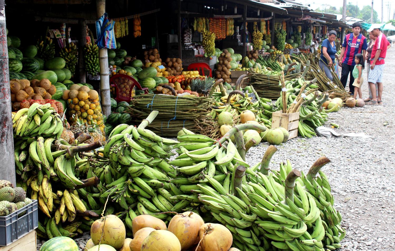 Wohin man blickt: Bananen, selten bio | Wherever you look: bananas, rarely organic