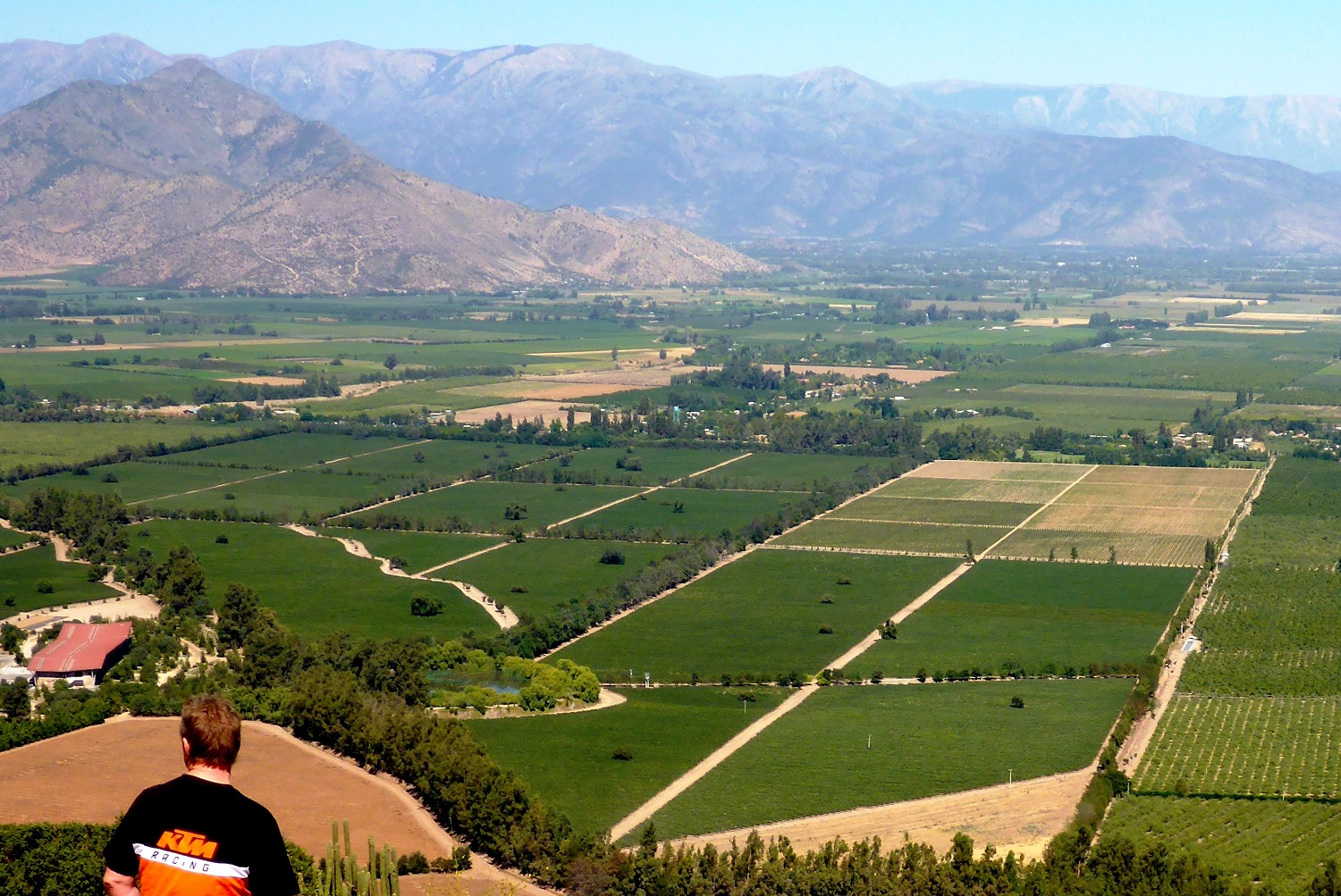 Blick auf die Weingärten im Tal des Maipo-Flusses | View of the vineyards in the Maipo river valley