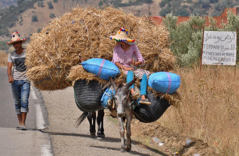 … sind andere auf dem Heimweg vom Feld   … others are on their way home from the field