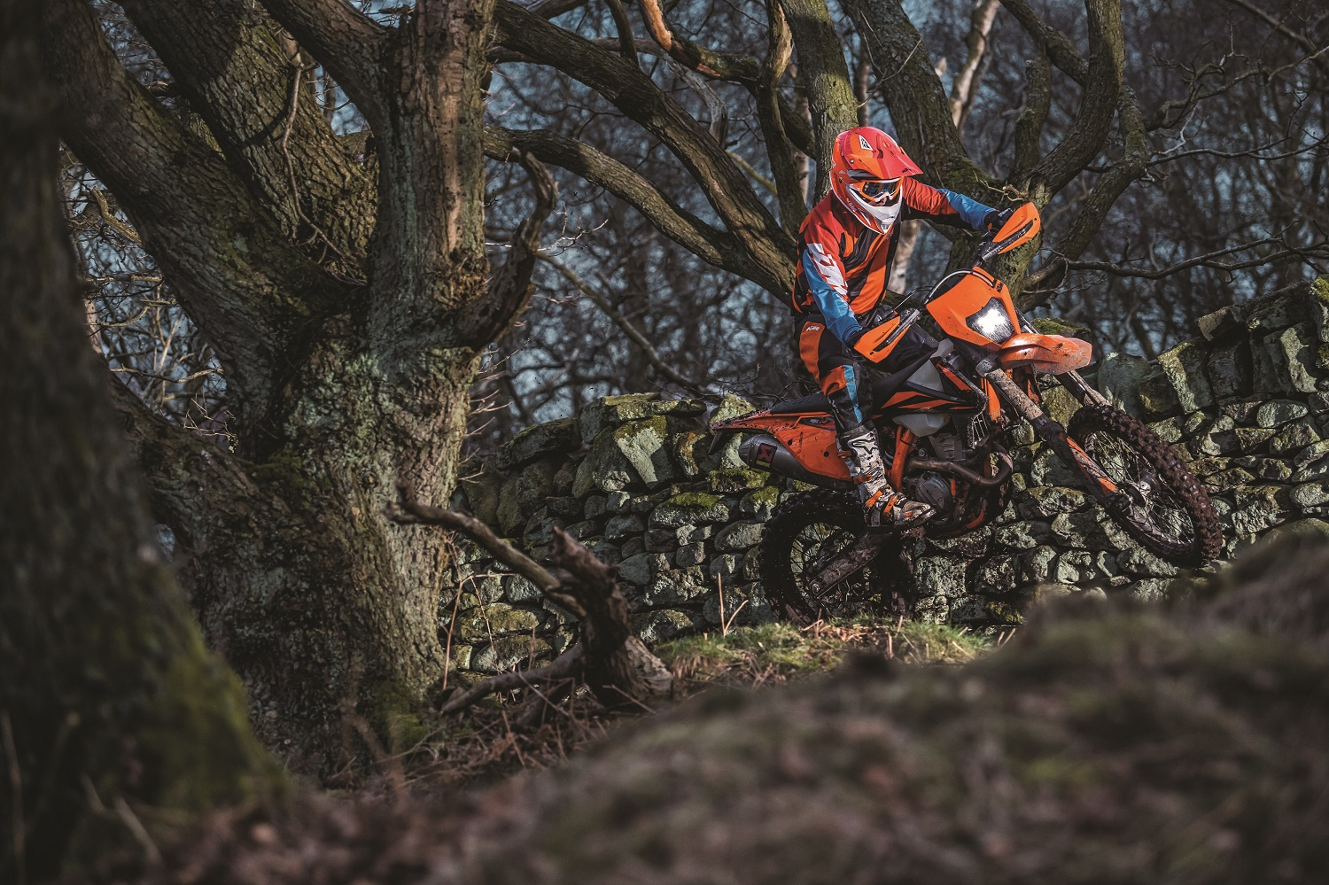 03_Action_KTM 350 EXC-F MY2019